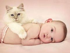 做试管婴儿为什么有人一次就成功怀孕了 而有的