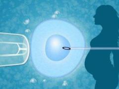 AMH值低可以提高吗?做试管婴儿前如何调养增强