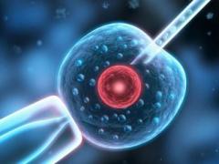 试管婴儿出生的孩子与自然受孕的小孩一样吗?