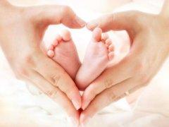试管婴儿促排期间做B超看到的卵泡就是卵子吗?