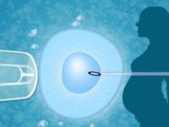 AMH值竟然能预测试管婴儿成功率?这一理论有没