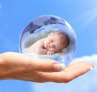 试管婴儿与人工受精的成功率是多少?