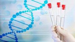 试管婴儿冻囊胚移植成功率高吗?